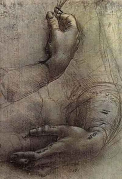 Sketch by Leonardo Da Vinci