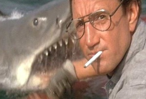 Roy Scheider (and Bruce) in Jaws