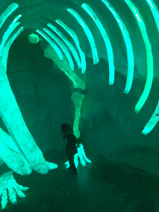 House of Eternal Return at Meow Wolf